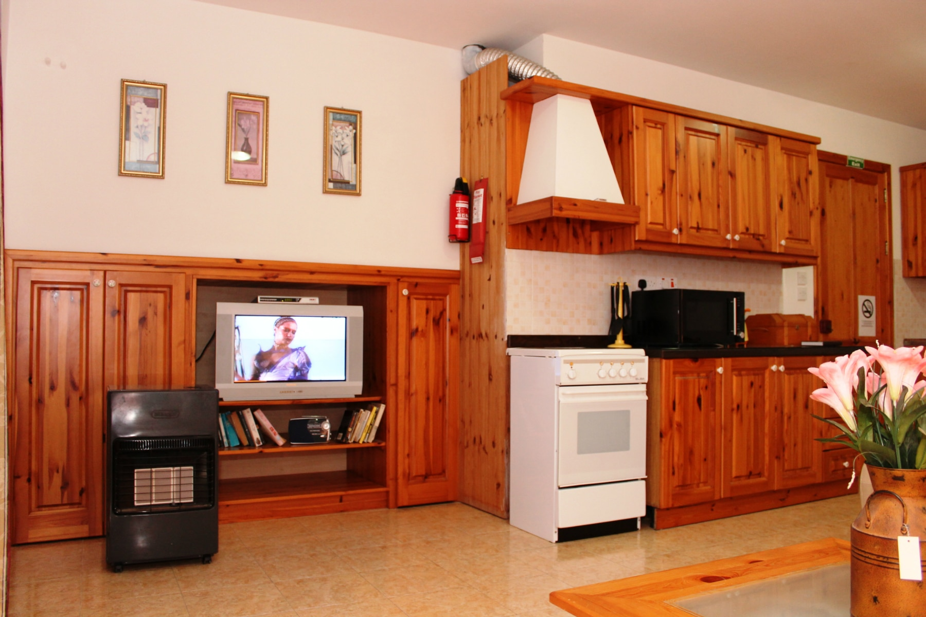 kitchen and TV area-w1920-h1200